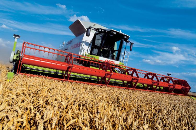 Poletjele cijene pšenice u Evropi