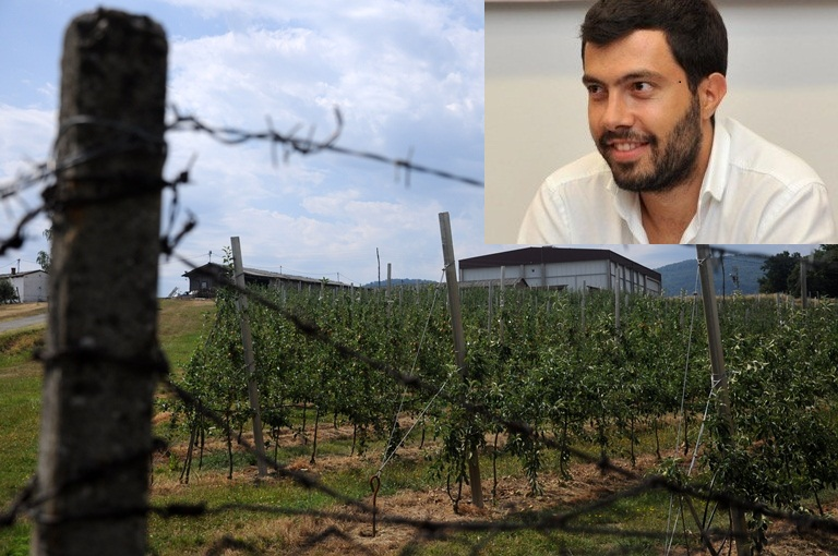 Firme porodice Dodik zaradile 1,5 miliona KM
