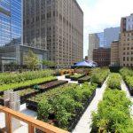 Po uzoru na metropole: U Banjoj Luci će se proizvoditi organska hrana između stambenih objekata