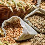 Produktna berza: Pad cijena primarnih poljoprivrednih proizvoda