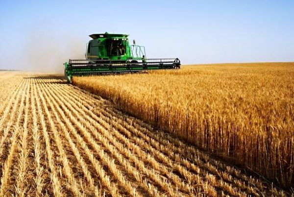 Propao plan za probni popis poljoprivrede u septembru