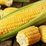 Kukuruz dominirao na berzi cijenom oko 0,16 evra