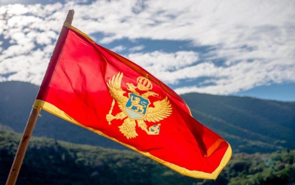 Crna Gora: Rast spoljnotrgovinske razmjene 12 odsto, srbija najvažniji partner