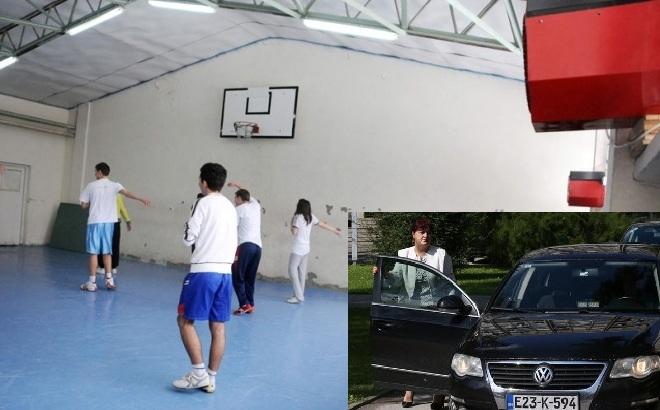 Ministarka Davidović kupila novu limuzinu, pa ukinula novac za sanaciju sportskih objekata