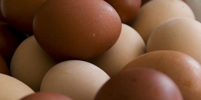 Bosni i Hercegovini odobren izvoz jaja u Evropsku uniju