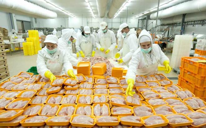 Izvoz piletine u zemlje EU kreće za oko 50 dana