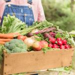 Organska proizvodnja stagnira: Izvoz uduplan, ali i dalje mizeran
