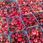Ovogodišnji Sajam trešnje u znaku uvezivanja Mostara i Skoplja