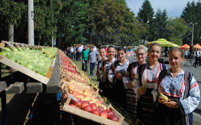 Berićetna voćna godina u Gornjim Podgradcima