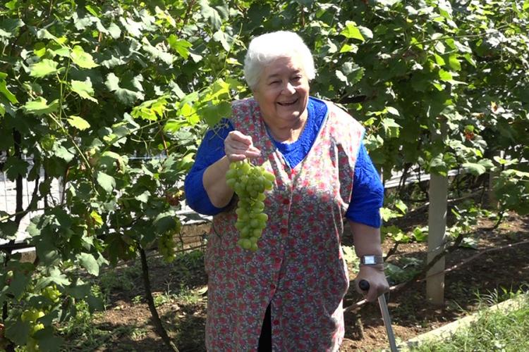 Jelena Njegić-Bešić uzgaja u egzotičnom vrtu kivi i japanske jabuke
