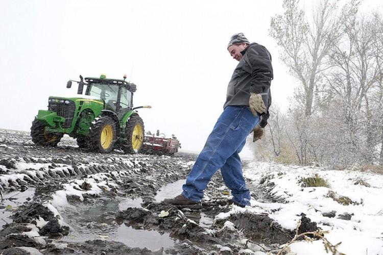 Snijeg pogoduje poljoprivrednicima