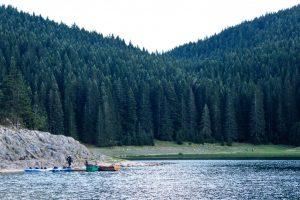Nacionalne parkove Crne Gore