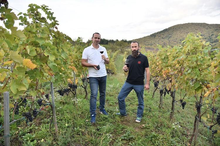 """""""Imamo bogomdanu zemlju i klimu za uzgoj vinove loze"""""""