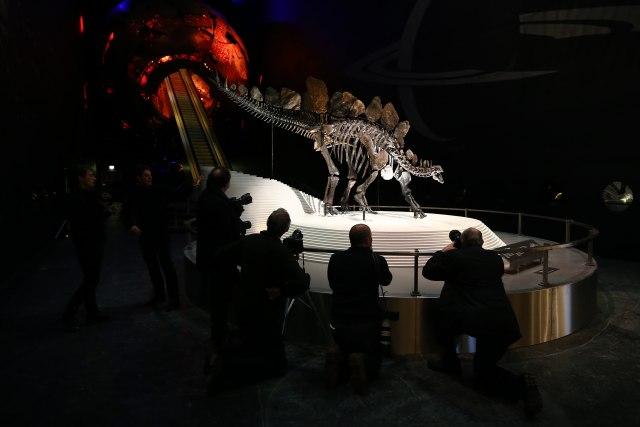 Onlajn aukcije: Jagma za fosilima dinosaurusa