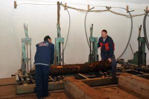 drvopreradjivači korona