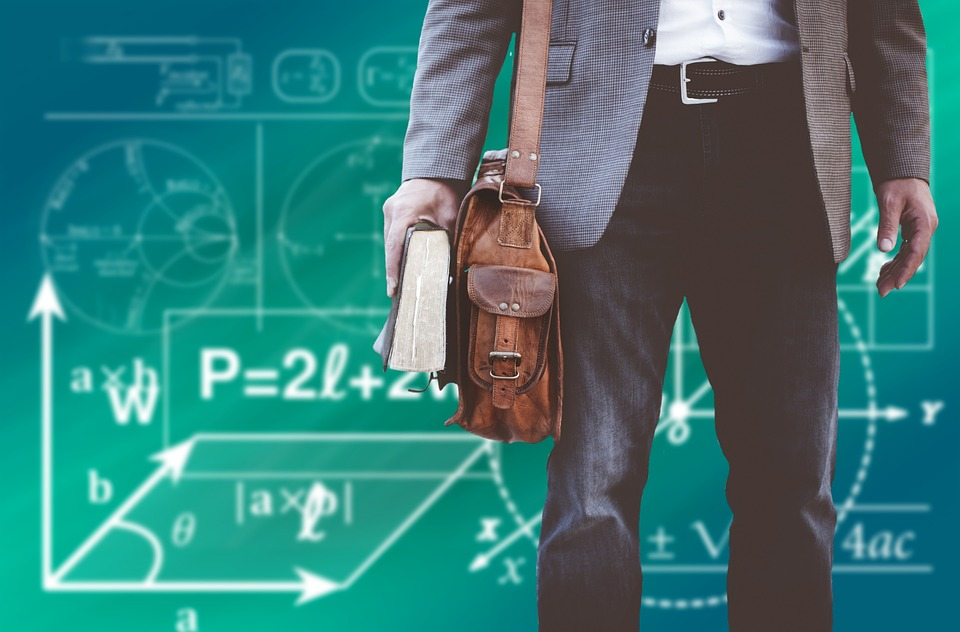 profesori ekonomije