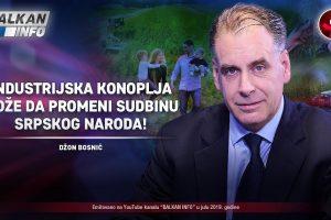 džon bosnić