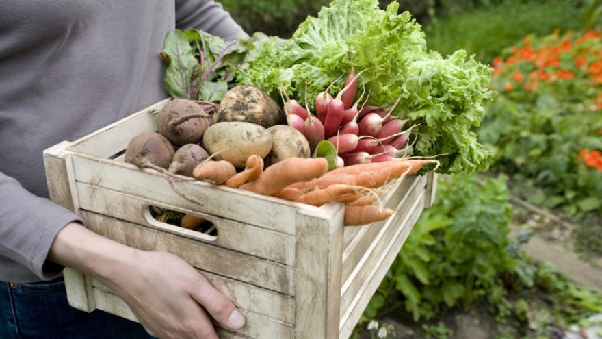 poljoprivredni proizvodi