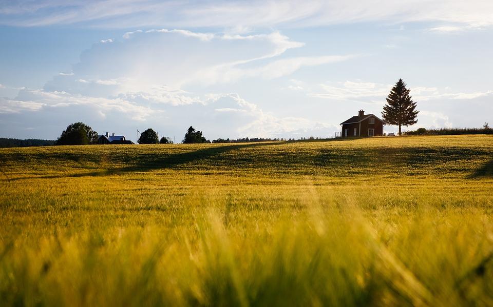 mladi ruralna područja